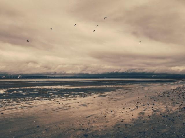 Sand & Dust
